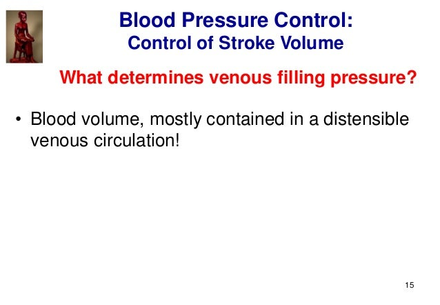 15 What determines venous filling pressure? • Blood volume, mostly contained in a distensible venous circulation! Blood Pr...