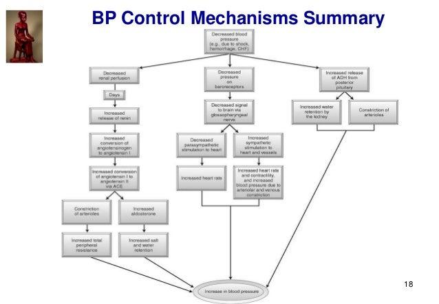 18 BP Control Mechanisms Summary