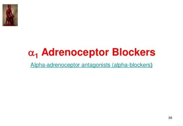 36 1 Adrenoceptor Blockers Alpha-adrenoceptor antagonists (alpha-blockers)
