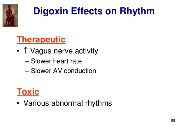 55 Digoxin Effects on Rhythm Therapeutic •  Vagus nerve activity – Slower heart rate – Slower AV conduction Toxic • Vario...
