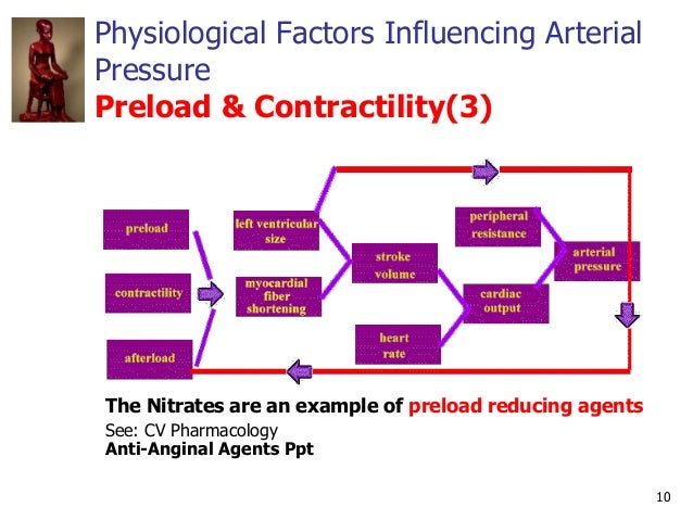 10 Physiological Factors Influencing Arterial Pressure Preload & Contractility(3) The Nitrates are an example of preload r...
