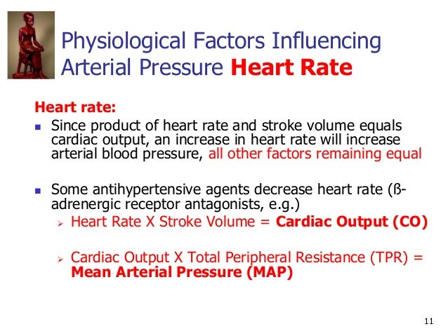 11 Physiological Factors Influencing Arterial Pressure Heart Rate Heart rate:  Since product of heart rate and stroke vol...