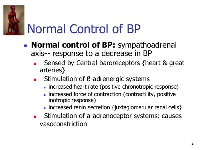 2 Normal Control of BP  Normal control of BP: sympathoadrenal axis-- response to a decrease in BP  Sensed by Central bar...