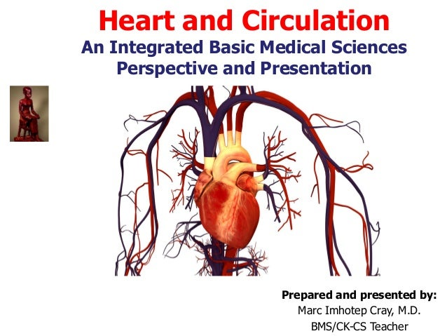 Heart and Circulation An Integrated Basic Medical Sciences Perspective and Presentation Prepared and presented by: Marc Im...