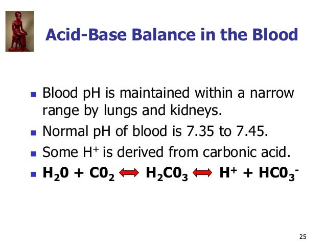 Copyright © The McGraw-Hill Companies, Inc. Permission required for reproduction or display. 25 Acid-Base Balance in the B...