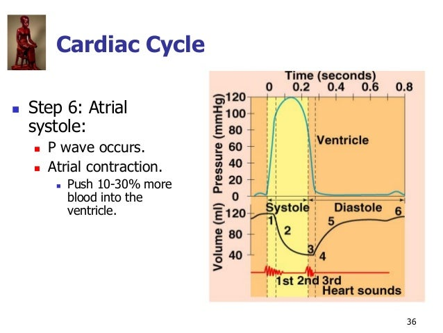 Copyright © The McGraw-Hill Companies, Inc. Permission required for reproduction or display. 36 Cardiac Cycle  Step 6: At...