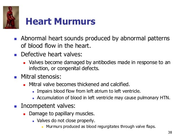 Copyright © The McGraw-Hill Companies, Inc. Permission required for reproduction or display. 38 Heart Murmurs  Abnormal h...