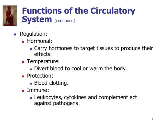 Copyright © The McGraw-Hill Companies, Inc. Permission required for reproduction or display. 4 Functions of the Circulator...