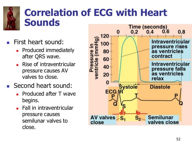 Copyright © The McGraw-Hill Companies, Inc. Permission required for reproduction or display. 52 Correlation of ECG with He...