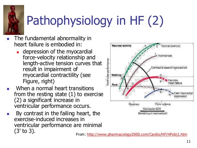 11 Pathophysiology in HF (2)  The fundamental abnormality in heart failure is embodied in:  depression of the myocardial...