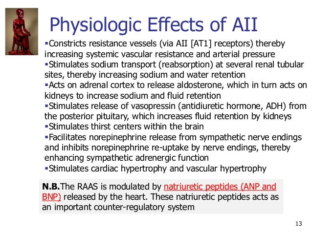 Physiologic Effects of AII 13 N.B.The RAAS is modulated by natriuretic peptides (ANP and BNP) released by the heart. These...