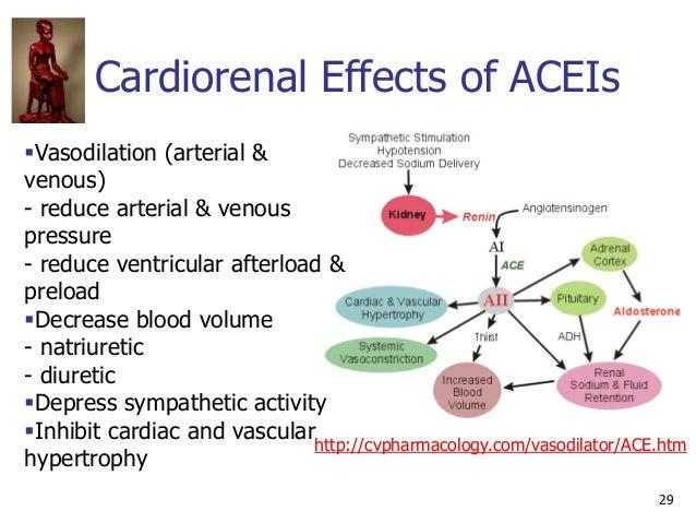 Cardiorenal Effects of ACEIs 29 Vasodilation (arterial & venous) - reduce arterial & venous pressure - reduce ventricular...
