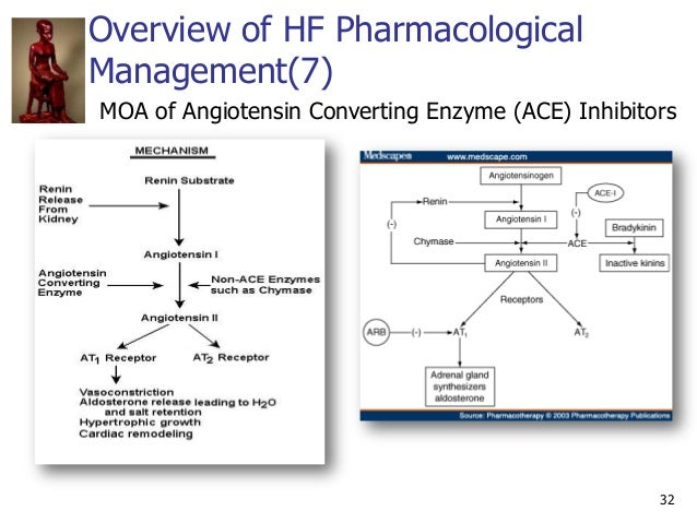 32 Overview of HF Pharmacological Management(7) MOA of Angiotensin Converting Enzyme (ACE) Inhibitors