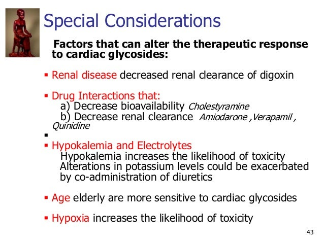 Special Considerations 43 Factors that can alter the therapeutic response to cardiac glycosides:  Renal disease decreased...
