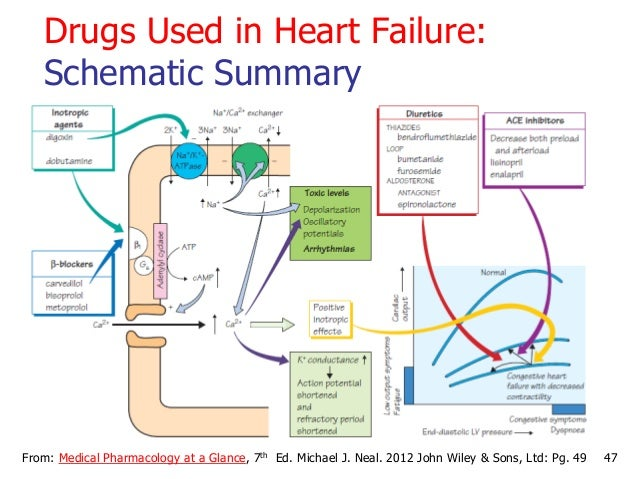 47From: Medical Pharmacology at a Glance, 7th Ed. Michael J. Neal. 2012 John Wiley & Sons, Ltd: Pg. 49 Drugs Used in Heart...