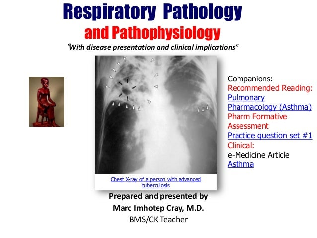 "Respiratory Pathology and Pathophysiology ""With disease presentation and clinical implications"" Companions: Recommended Re..."