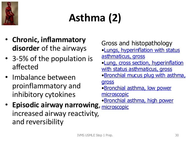 Asthma (2) • Chronic, inflammatory disorder of the airways • 3-5% of the population is affected • Imbalance between proinf...