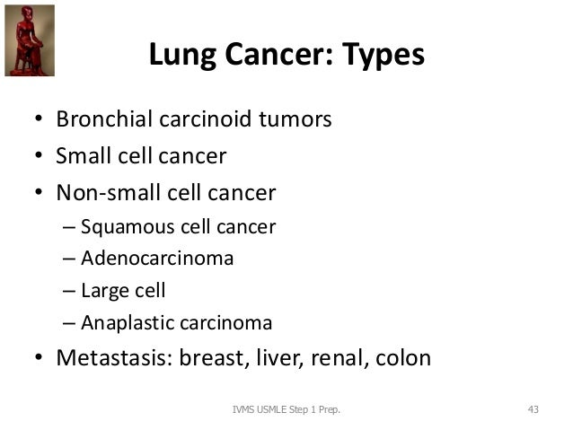 Lung Cancer: Types • Bronchial carcinoid tumors • Small cell cancer • Non-small cell cancer – Squamous cell cancer – Adeno...