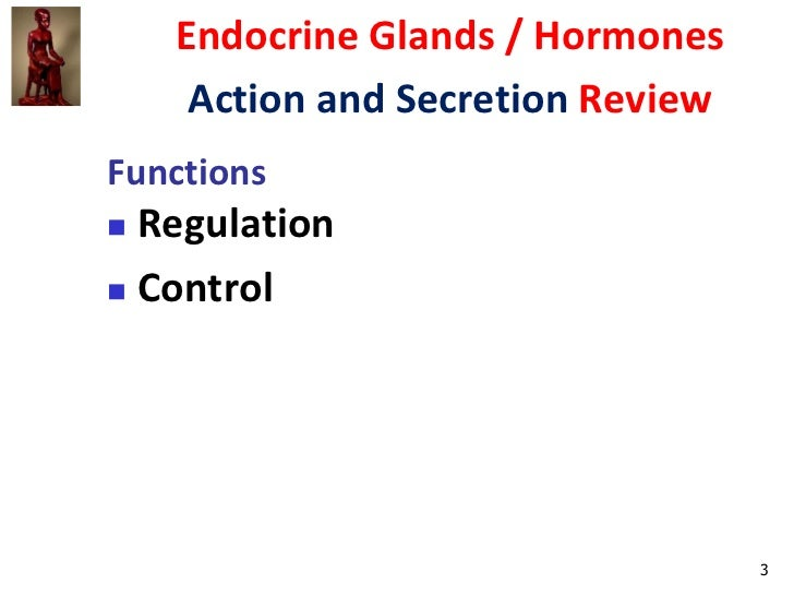 endocrine system biochemistry secretion and transport Secretion in bacterial species means the transport or  this secretion system was first discovered in  the physiology and biochemistry of.