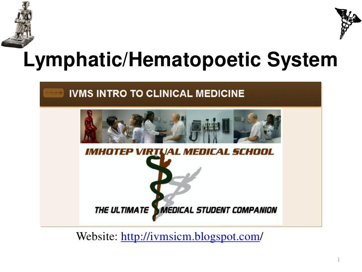 Lymphatic/Hematopoetic System    Website: http://ivmsicm.blogspot.com/                                            1