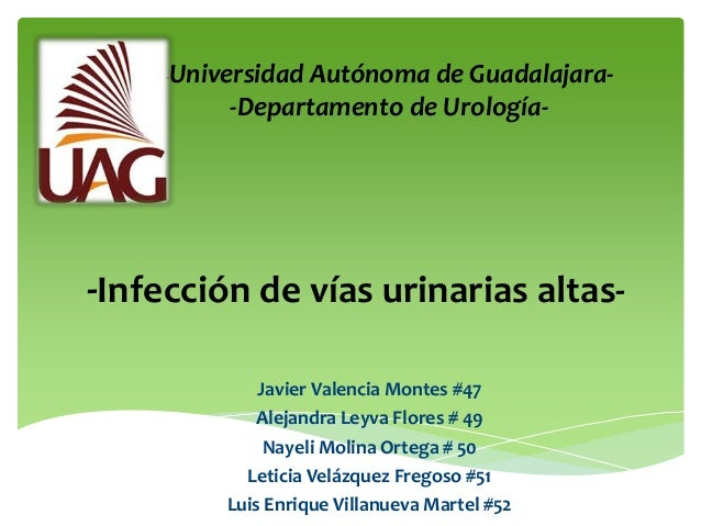 -Universidad                Autónoma de Guadalajara-          -Departamento de Urología--Infección de vías urinarias altas...