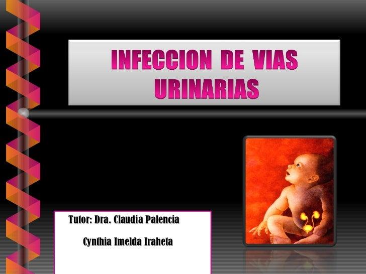 Tutor: Dra. Claudia Palencia Cynthia Imelda Iraheta