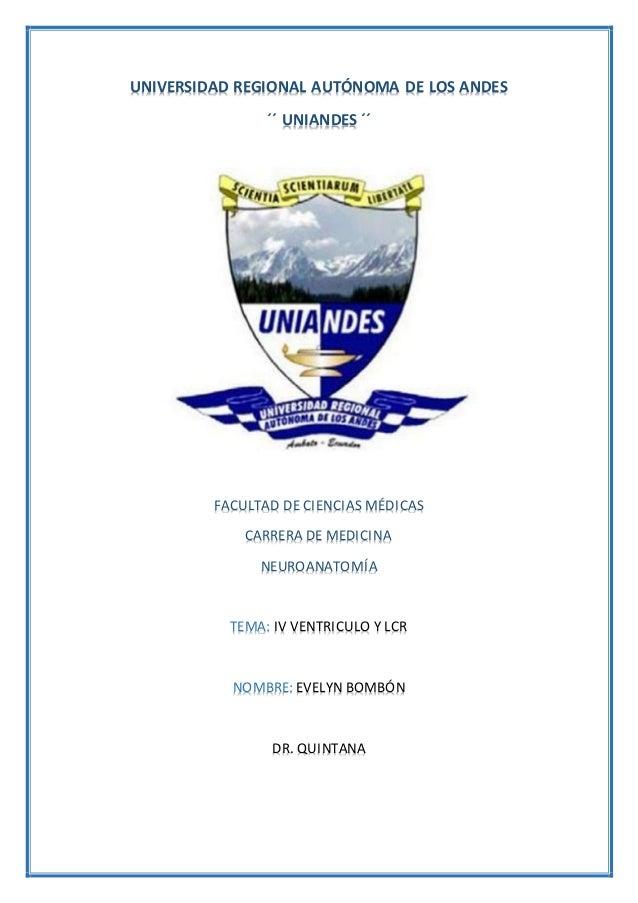 UNIVERSIDAD REGIONAL AUTÓNOMA DE LOS ANDES ´´ UNIANDES ´´ FACULTAD DE CIENCIAS MÉDICAS CARRERA DE MEDICINA NEUROANATOMÍA T...