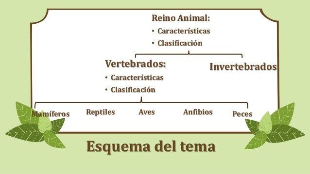 VERTEBRADOS. CARACTERÍSTICAS GENERALES Slide 3