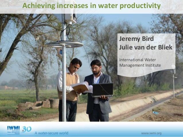 Achieving increases in water productivity Jeremy Bird Julie van der Bliek International Water Management Institute