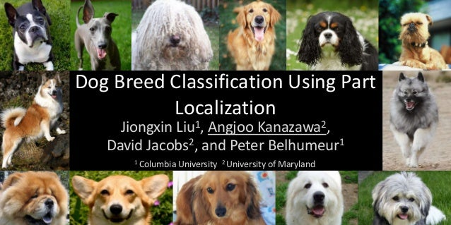Dog Breed Classification Using Part          Localization     Jiongxin       Liu 1,                    Angjoo             ...