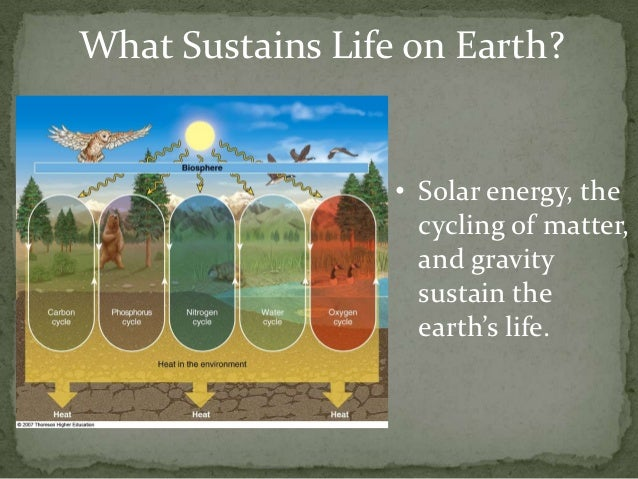 What Sustains Life on Earth?                  • Solar energy, the                    cycling of matter,                   ...