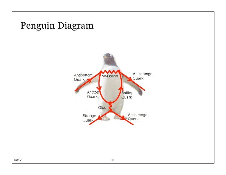 Diagrams Of A Real Penguin Diagrams Little Blue Penguin Diagram