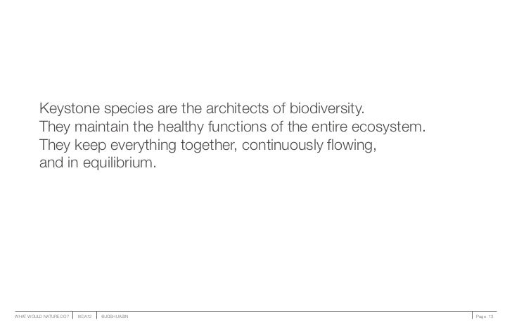 Keystone species are the architects of biodiversity.         They maintain the healthy functions of the entire ecosystem. ...