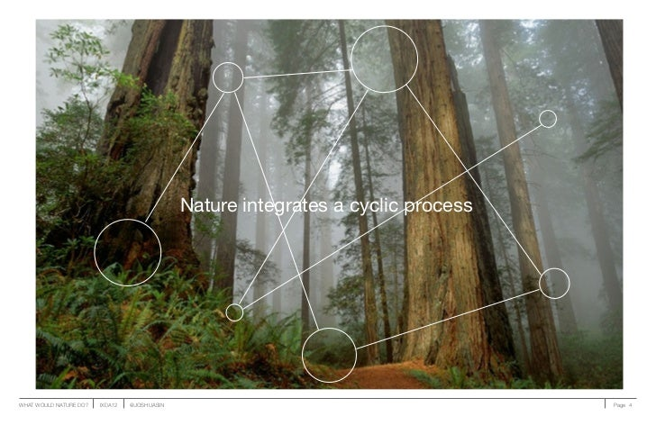 Nature integrates a cyclic processWHAT WOULD NATURE DO?   IXDA12   @JOSHUASIN                                        Page 4