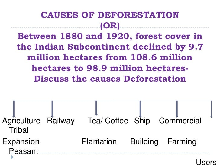 explain the causes of deforestation