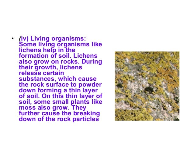 Living organisms depend on soil • The top surface layer of earth capable of supporting plant life is called soil. Soil is ...