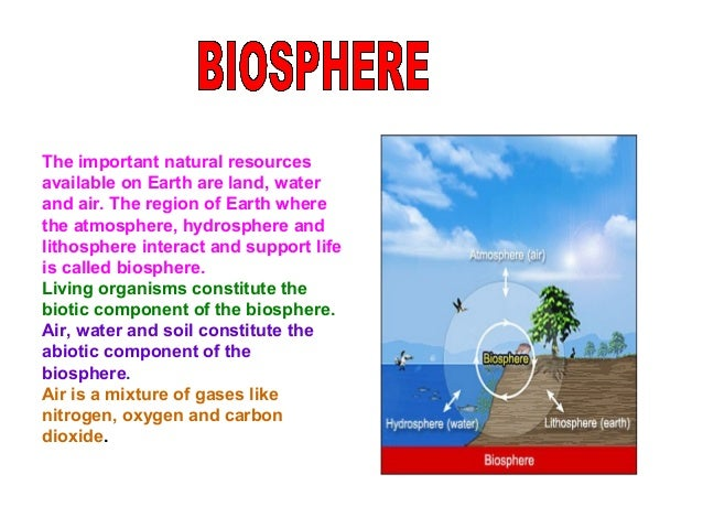 Plants and animals use oxygen for respiration. The combustion of fossil fuels also requires oxygen. Combustion Respiration