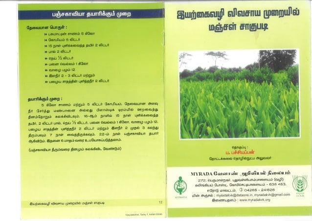 Basics of harvesting organic turmeric crop_ MYRADA Krishi Vigyan Kendra_2013_Tamil