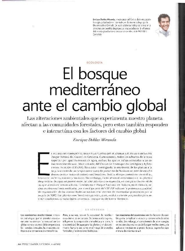El bosque mediterráneo ante el cambio global.