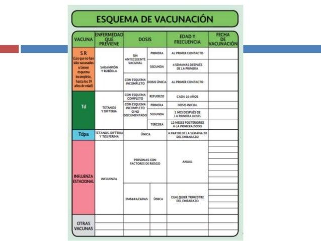 Esquema de vacunación adolescentes, mujeres, hombres y