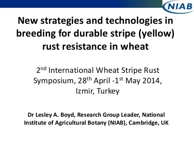 New strategies and technologies in breeding for durable stripe (yellow) rust resistance in wheat 2nd International Wheat S...