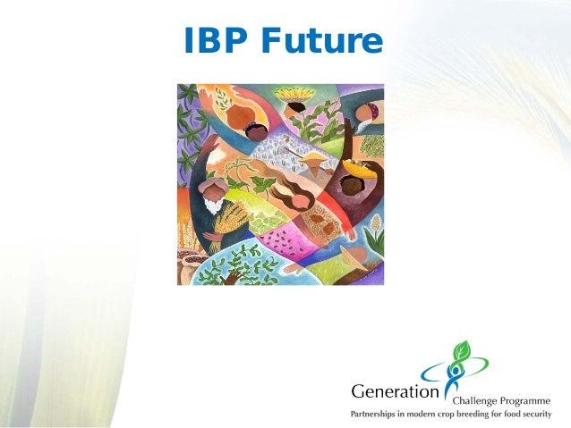 IBP Future