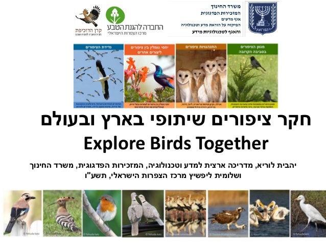 ובעולם בארץ שיתופי ציפורים חקר Explore Birds Together לוריא יהבית,וטכנולוגיה למדע ארצית מדריכה,הפדג...