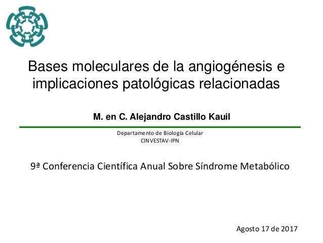 Bases moleculares de la angiogénesis e implicaciones patológicas relacionadas M. en C. Alejandro Castillo Kauil Departamen...