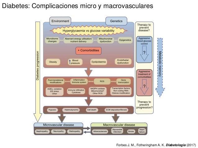 Diabetes: Complicaciones micro y macrovasculares Forbes J. M., Fotheringham A. K. Diabetologia (2017)