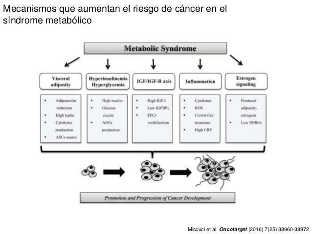 Mecanismos que aumentan el riesgo de cáncer en el síndrome metabólico Miccuci et al. Oncotarget (2016) 7(25) 38960-38972ww...