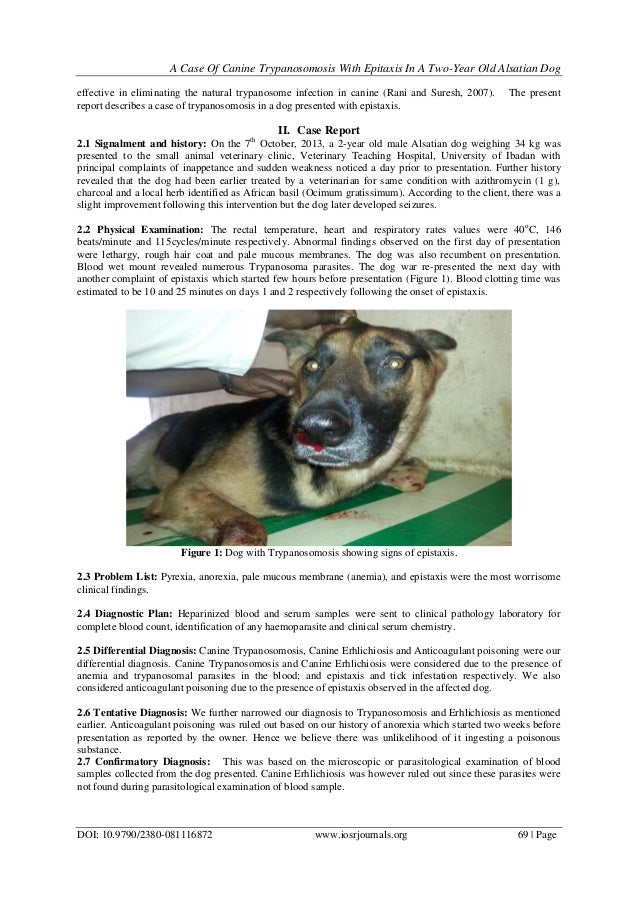 A Case Of Canine Trypanosomosis With Epistaxis In A TwoYear Old Alsat…