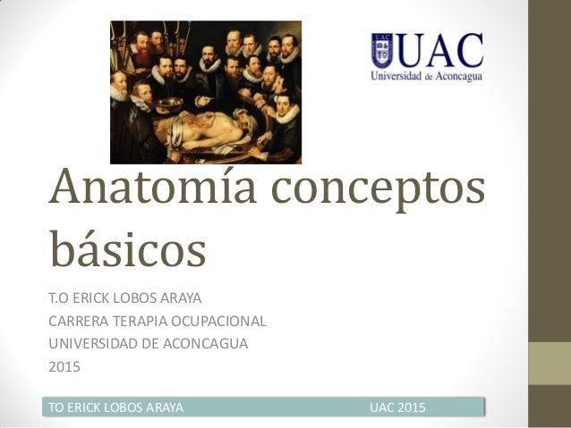 Anatomía conceptos básicos T.O ERICK LOBOS ARAYA CARRERA TERAPIA OCUPACIONAL UNIVERSIDAD DE ACONCAGUA 2015 TO ERICK LOBOS ...