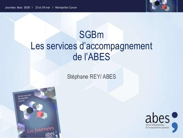 SGBm Les services d'accompagnement de l'ABES Stéphane REY/ ABES