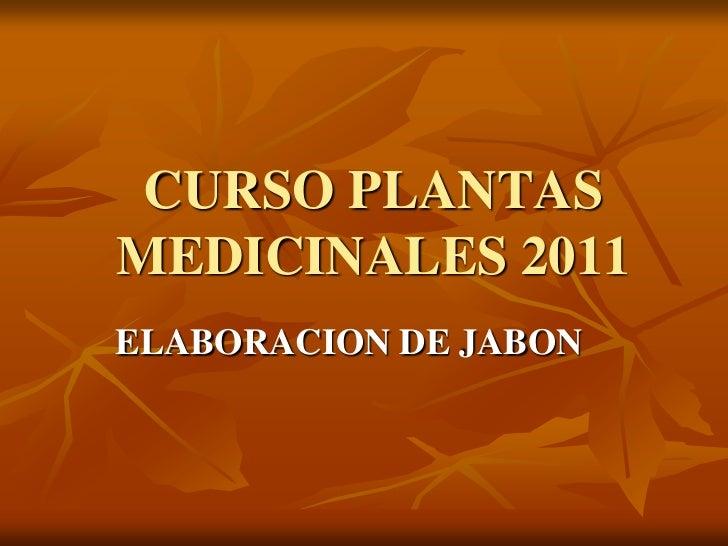 CURSO PLANTAS MEDICINALES 2011<br />ELABORACION DE JABON<br />